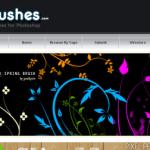 Des zolis brushs pour photoshop