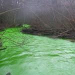 Une rivière verte fluo